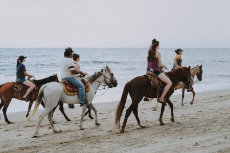 hen horse riding