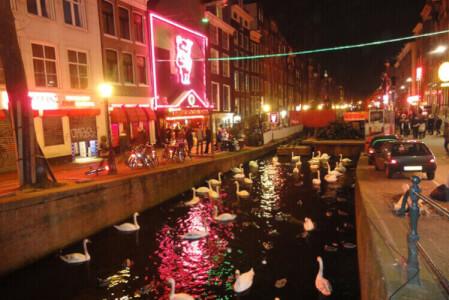 Rotlichtviertel Tour für meinen JGA in Amsterdam | Junggesellenabschied