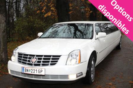 Cadillac Limo Tour pour mon EVG à Vienne | Enterrement de vie de garçon | idée enterrement de vie de garçon | activité enterrement de vie de garçon | idée evg | activité evg