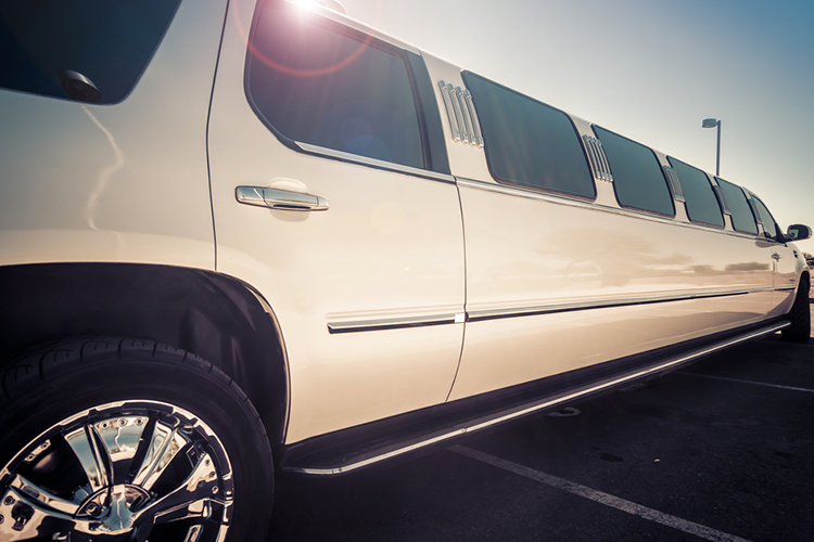 Limousine Transfer (14 pax) for my Amsterdam Hen Party   Maximise Hen Weekends