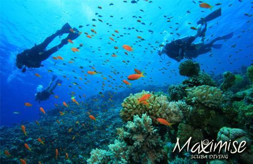 scuba diving Benalmadena