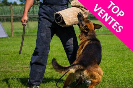 Man VS Dog pour mon EVG à Budapest | Enterrement de vie de garçon | idée enterrement de vie de garçon | activité enterrement de vie de garçon | idée evg | activité evg