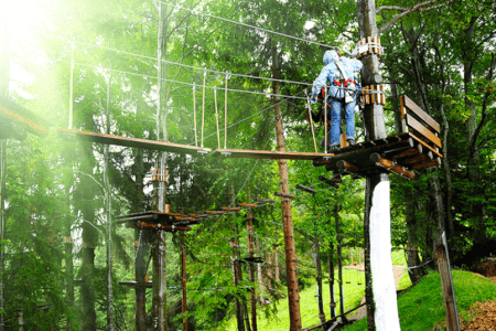 hen high ropes