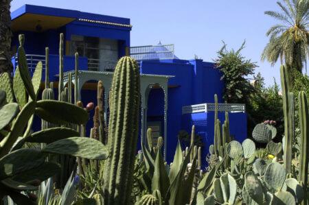 Jardins Majorelles & Museé YSL pour mon EVG à Marrakech | Enterrement de vie de garçon | idée enterrement de vie de garçon | activité enterrement de vie de garçon | idée evg | activité evg