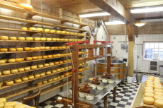 Atelier fromage pour mon EVJF à Val de Loire | Enterrement de vie de jeune fille | idée evjf | idée enterrement de vie de jeune fille | activité evjf |activité enterrement de vie de jeune fille