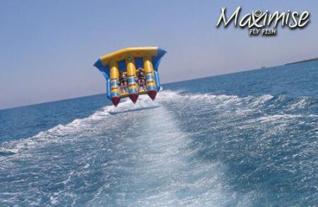 Flying Fish Tenerife