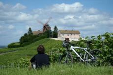 Vignoble à vélo  pour mon EVJF à Reims | Enterrement de vie de jeune fille | idée evjf | idée enterrement de vie de jeune fille | activité evjf |activité enterrement de vie de jeune fille